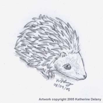 Pencil drawing of cute Hedgehog
