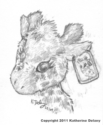 Pencil drawing of a Giraffe with a rectangular metal eartag that has a portrait of the giraffe