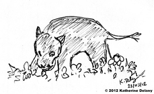 Scribbly black line drawing of Hippo standing in flowers