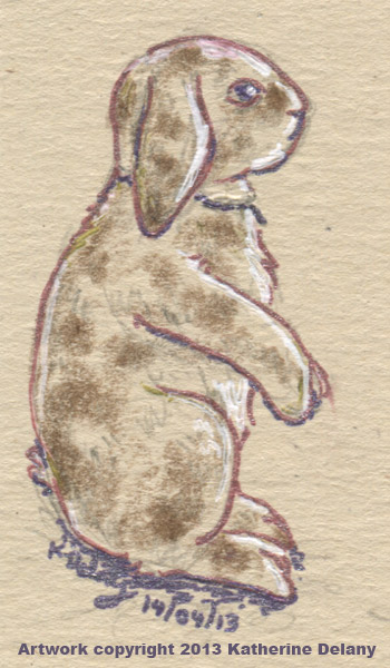 Lop-eared rabbit, tan with reddish brown spots and white edging, sitting up.