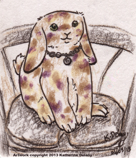 Lop-eared Rabbit in a silver necklace with round charm seated on a black rollator.